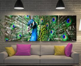 Amazing Peacock 4-Panel Print on Canvas