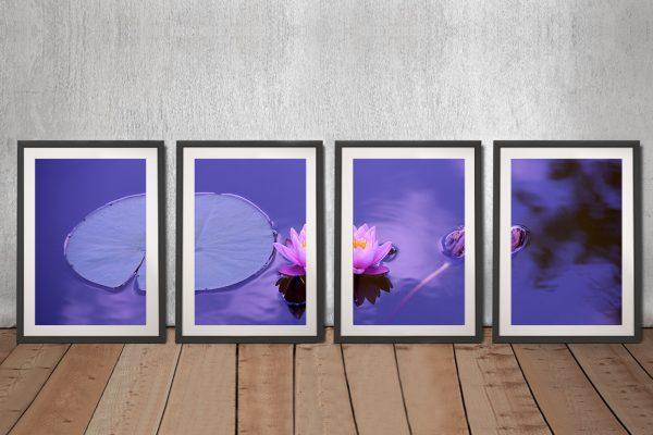 Purple Lotus Framed 4-Piece Art on Canvas