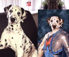 Dauphin of France Custom Pet Print on Canvas