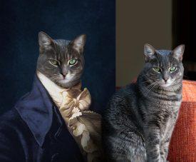 The Count Custom Cat Canvas Pet Portrait