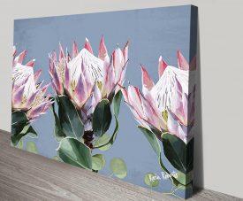 King Protea Karin Roberts Floral Artwork