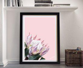 Framed Pink King Protea Karin Roberts Art