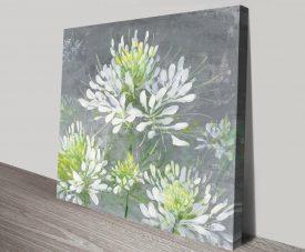 Farmhouse Cleome Elegant Floral Art Print