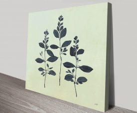 Botanical Study lV Print on Canvas