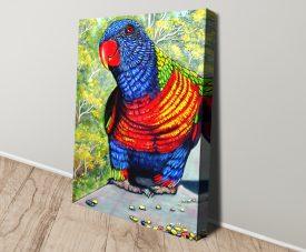 Tucker Time - Rainbow Lorikeet Print on Canvas