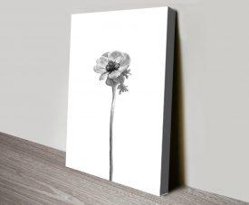 Anemone Coronaria Bright Design Artwork